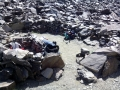 sierra nevada 44