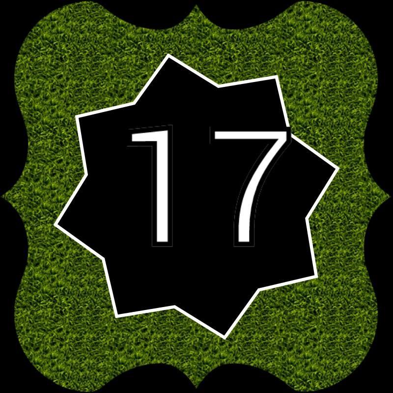 Avatar 17