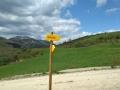 El camino de Santiago 6
