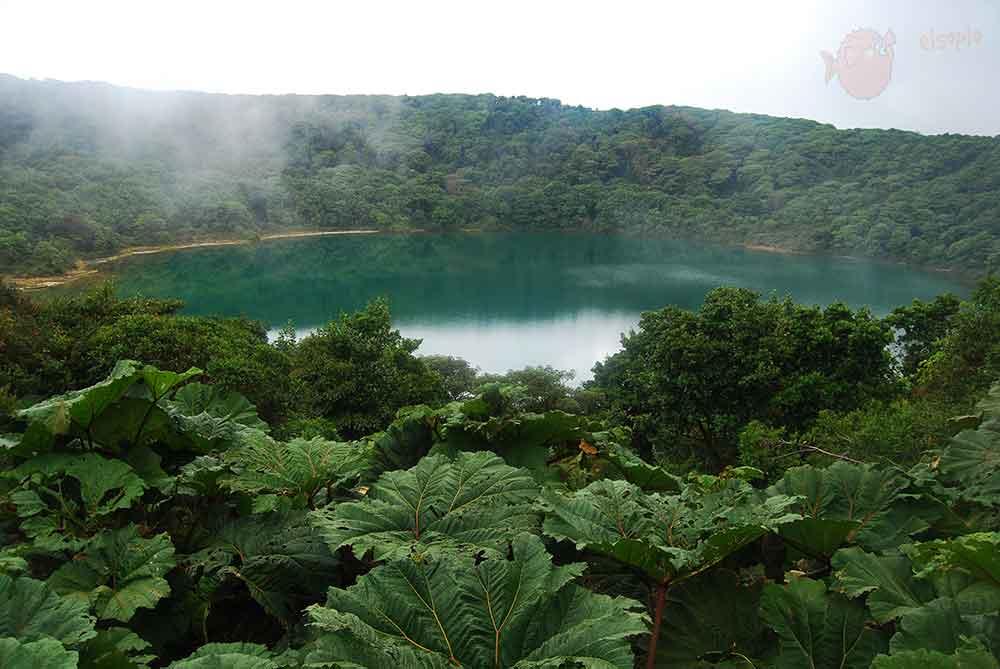 Laguna Cerro