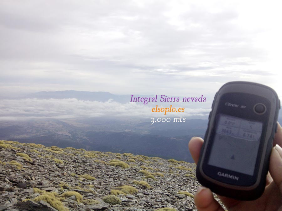 Integral Sierra Nevada 2015
