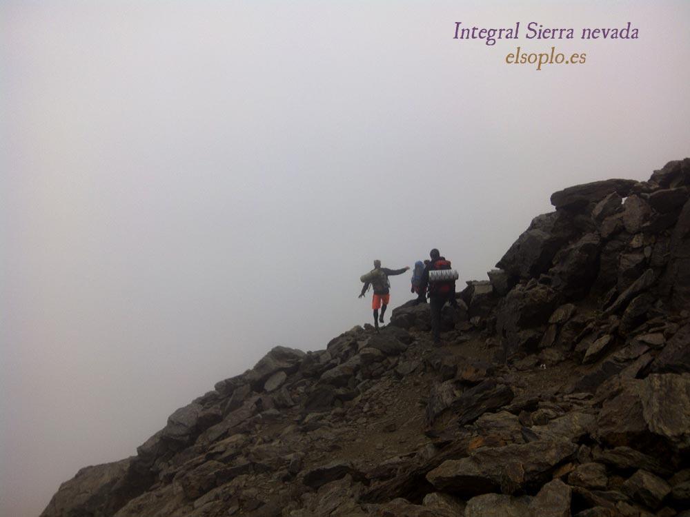 Integral Sierra Nevada 2015