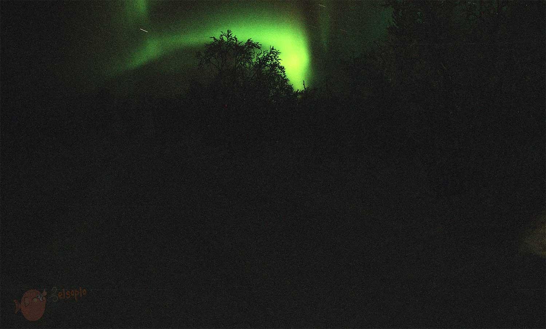 Aurora boreal ¡Por fin!