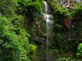 Ruta Quetzal hacia la cascada